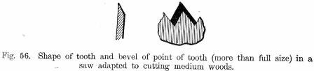 Shape of tooth and bevel of point of tooth Fig 56